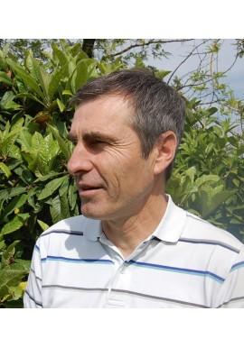Emmanuel Ardichvili